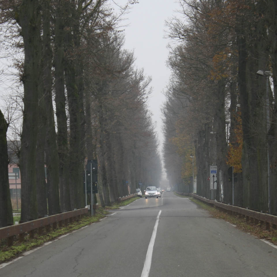 fog metaphor