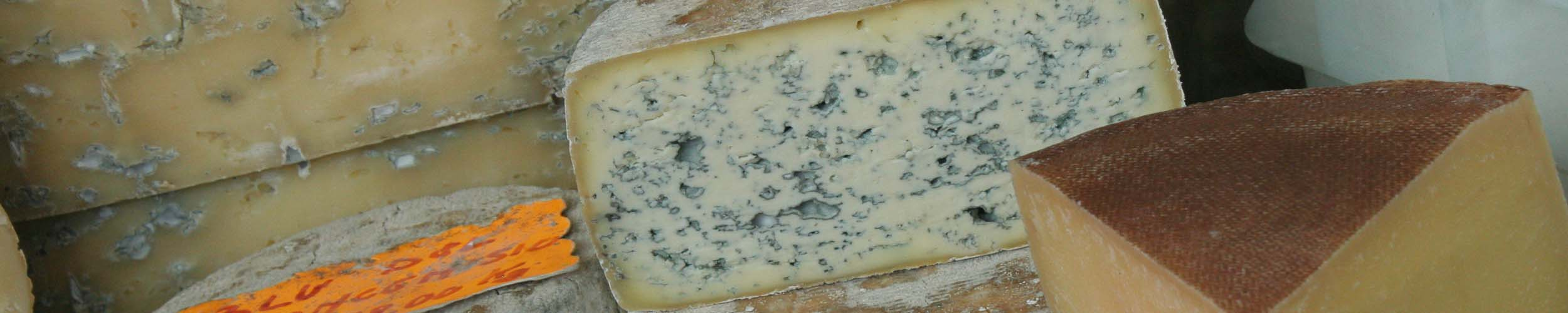 Gorgonzola myths - Italian Notes