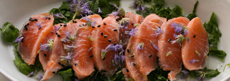 Salmon Ceviche - Italian Notes