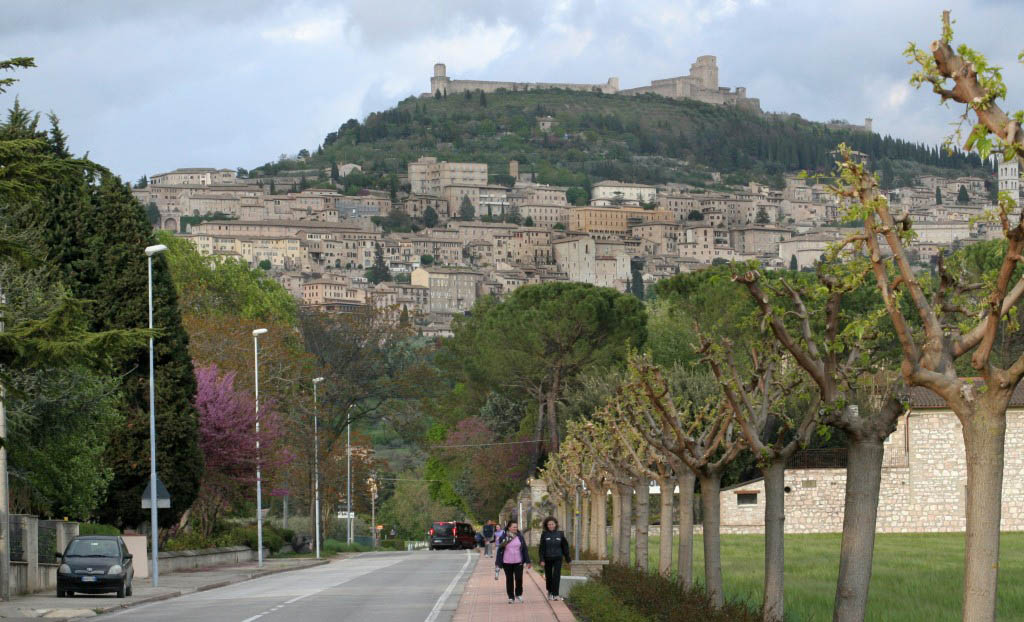 Pilgrim trails Assisi