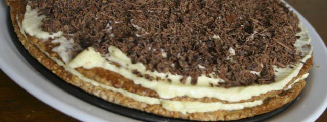 Chocolate layer ice cream cake