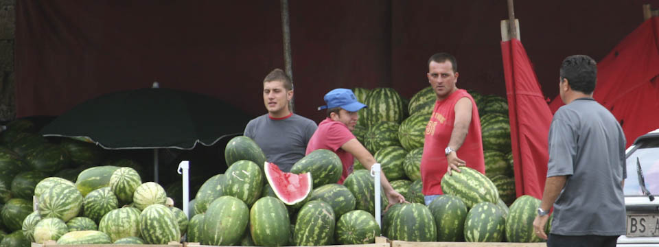 watermelon facts and trivia