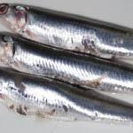 Photo of How to make marinated anchovies - Italian Notes
