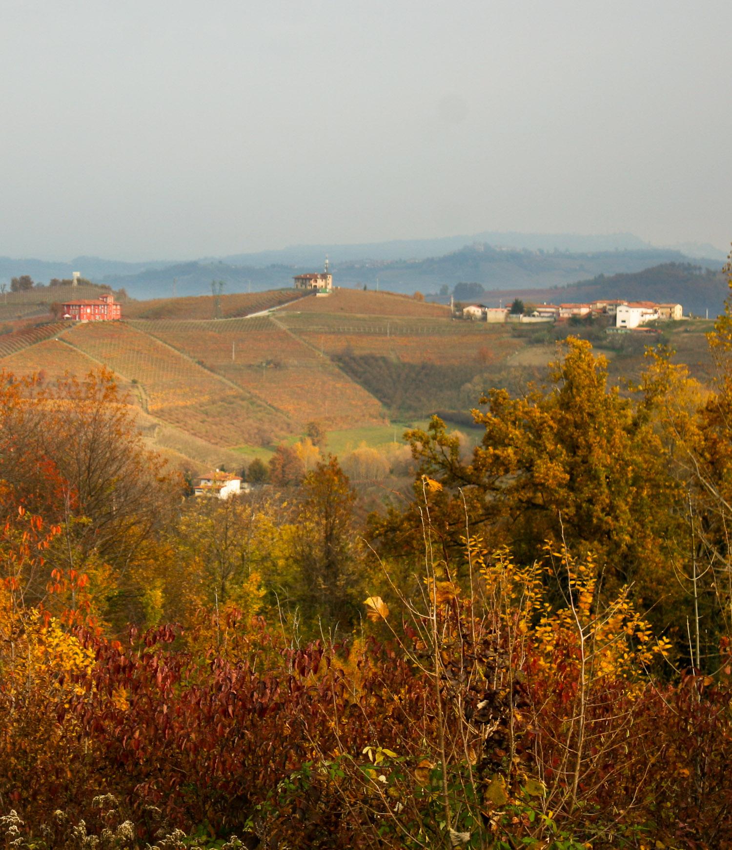 Autumn in Piedmont - Italian Notes