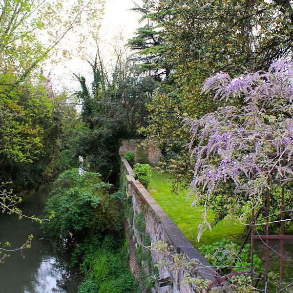 visit Padua botanical gardens