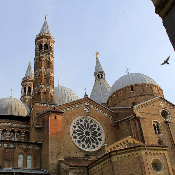 visit Padua cathedral