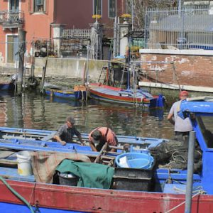 Chioggia pantry of Venice