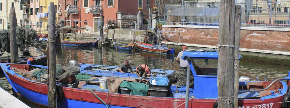 Chioggia pantry of Venice
