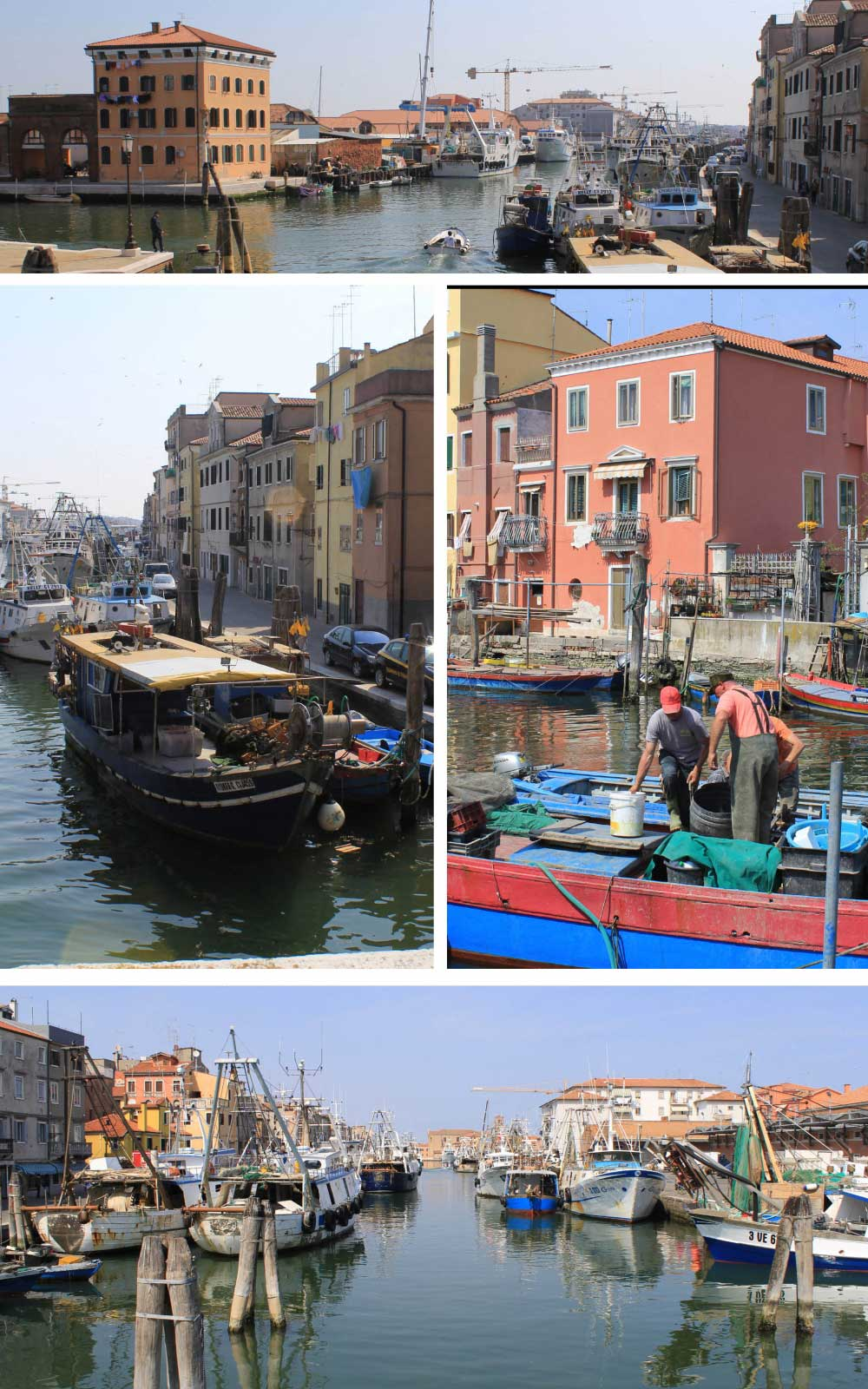 Chioggia the pantry of Venice - Italian Notes
