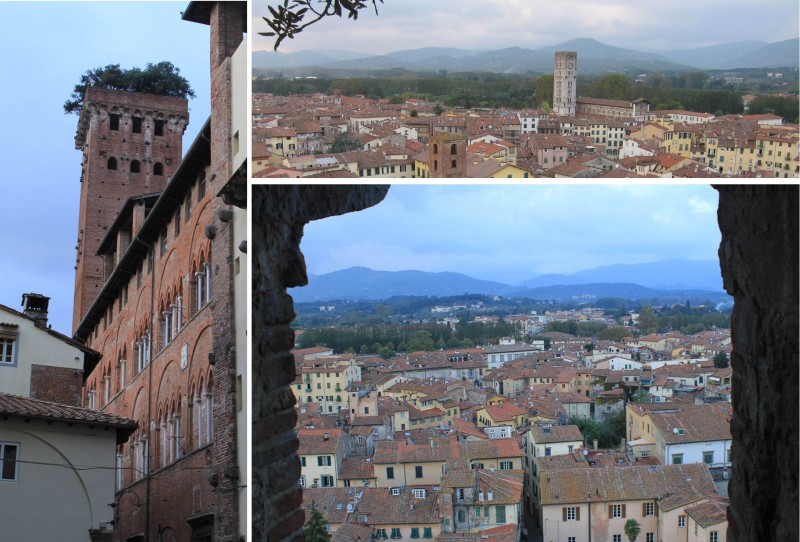 Views from the Guinigi Tower in Lucca, Tuscany