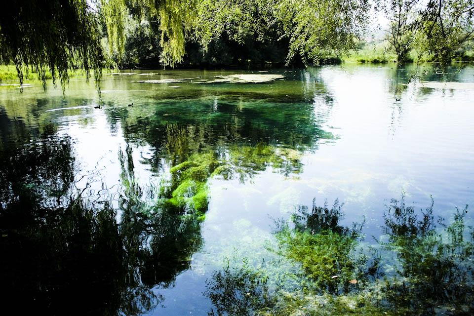 The floating island in lake Posta Fibreno