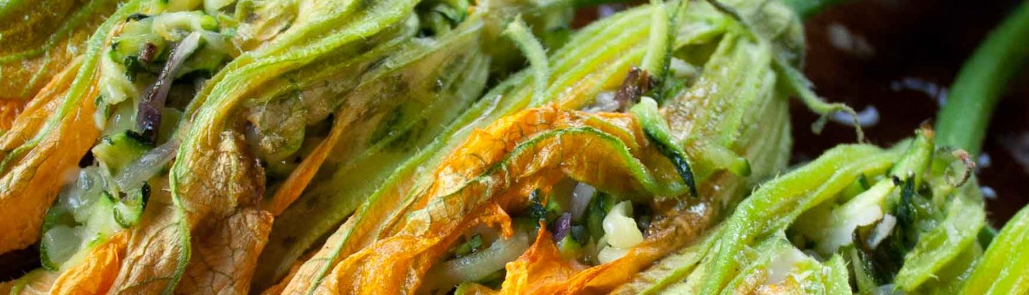 Italian antipasti of stuffed zucchini flowers