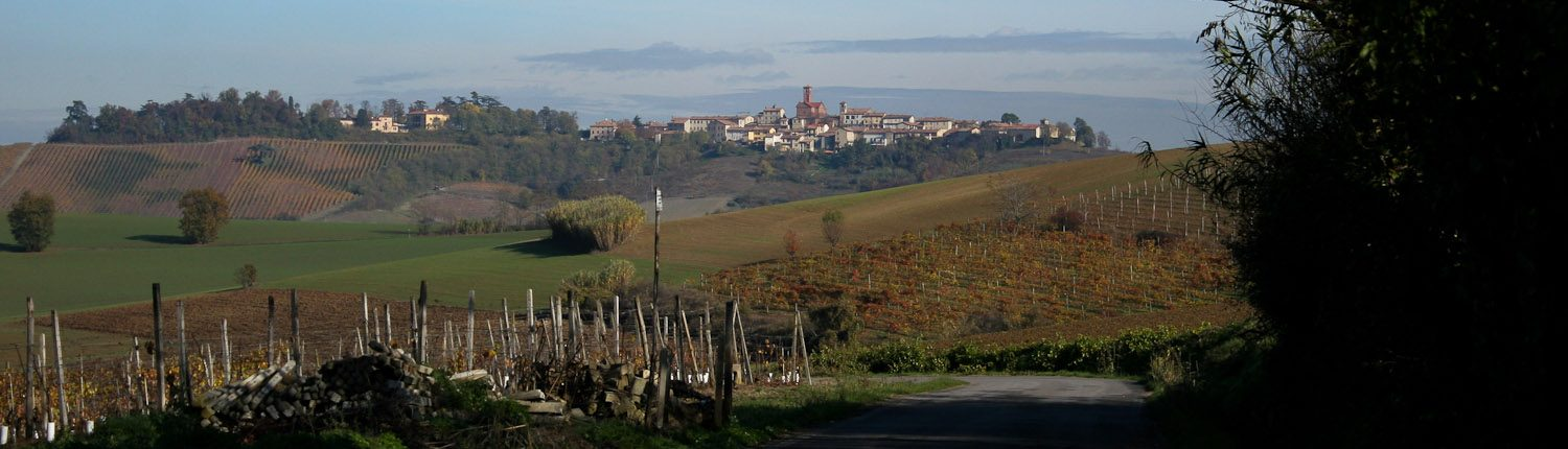 Notes on Piemonte-Piedmont - Barolo hill towns