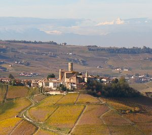Visiting the Barolo Villages - Italian Notes