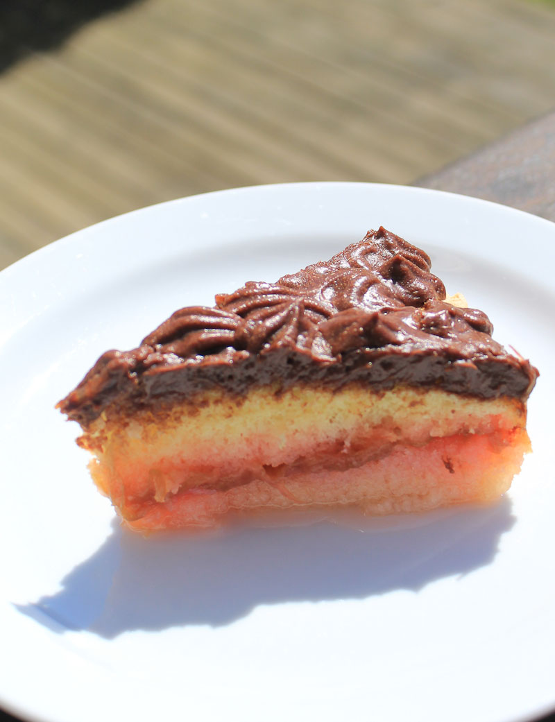 Sponge cake with rhubarb and chocolate mousse - Italian Notes