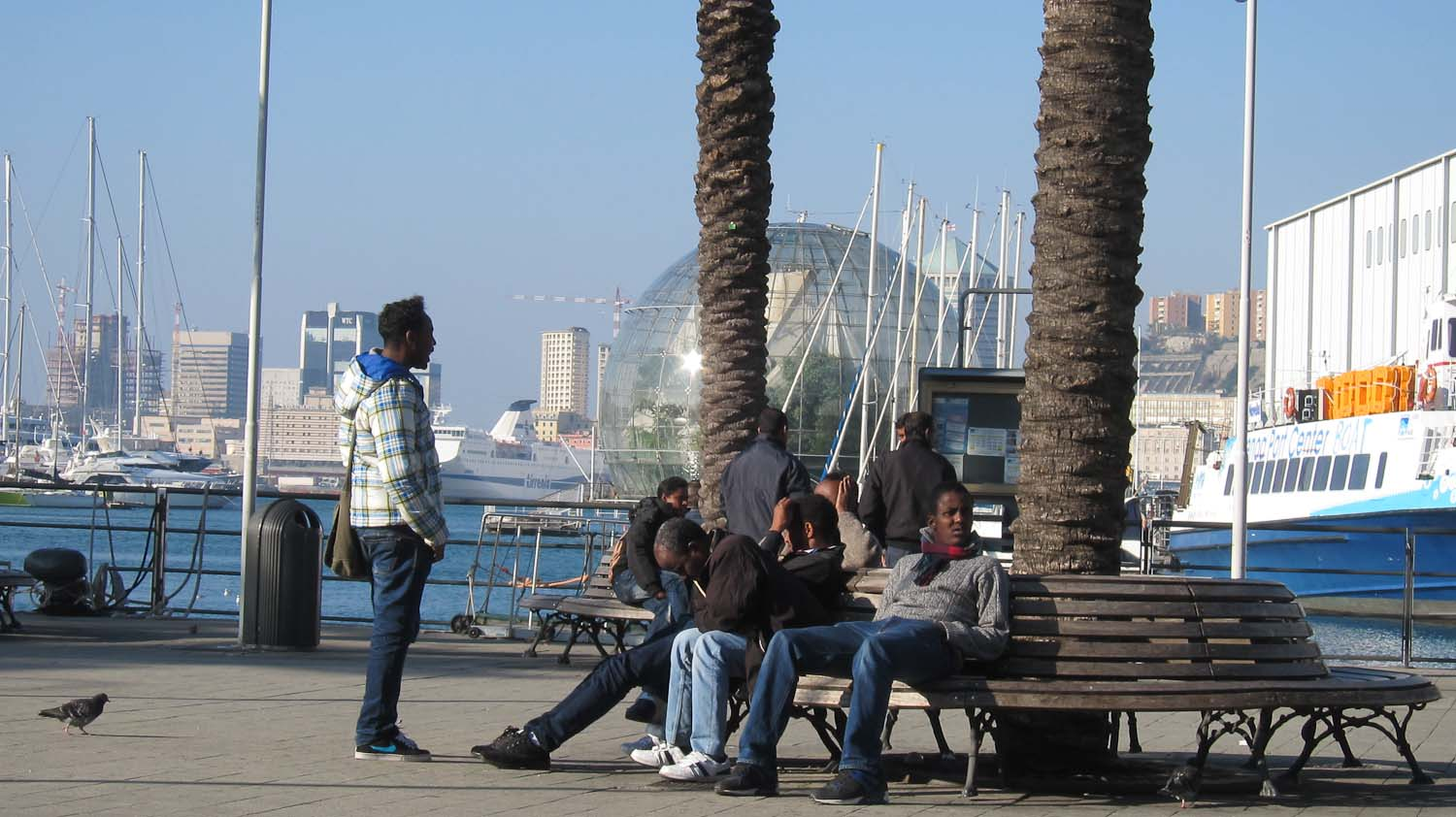 Blue jeans in the harbour of Genoa