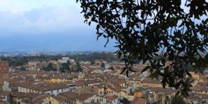 The Giunigi Tower in Lucca