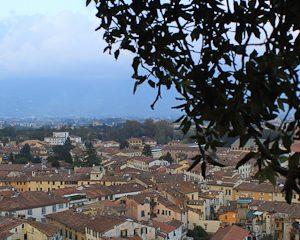 Giunigi Tower in Lucca
