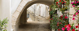 Discover Puglia - Italian Notes