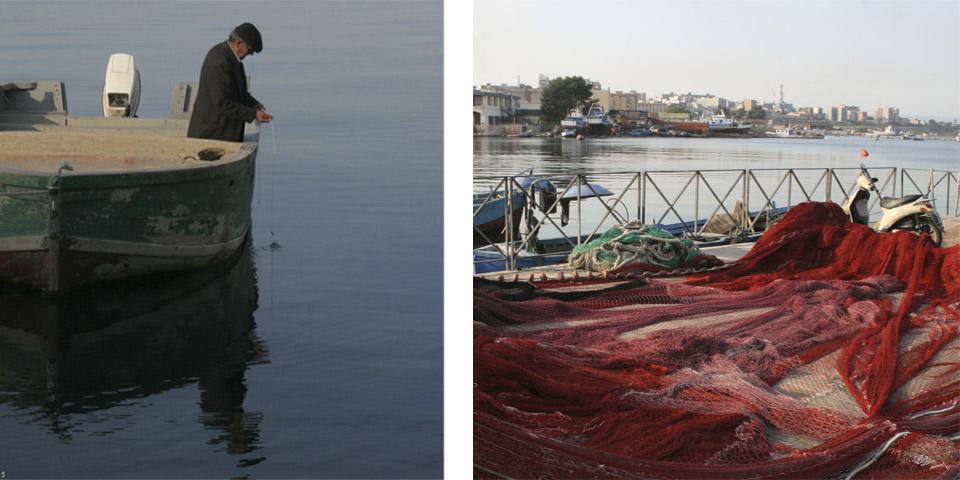 Mussels of Taranto